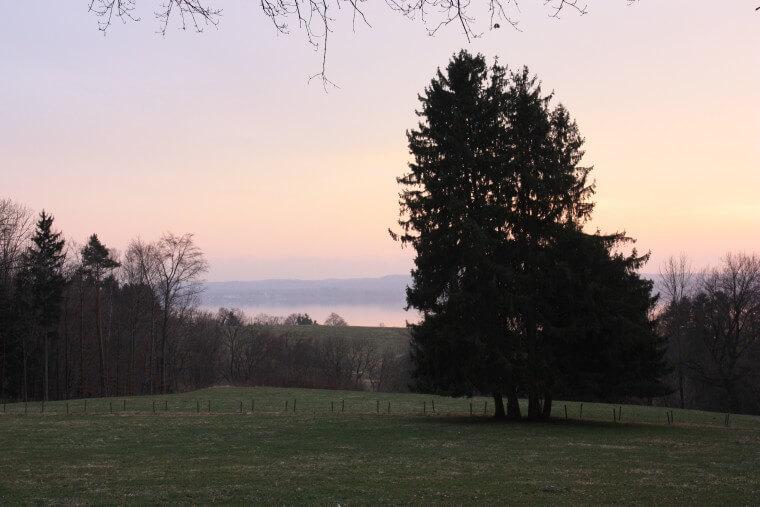 starnbergersee2